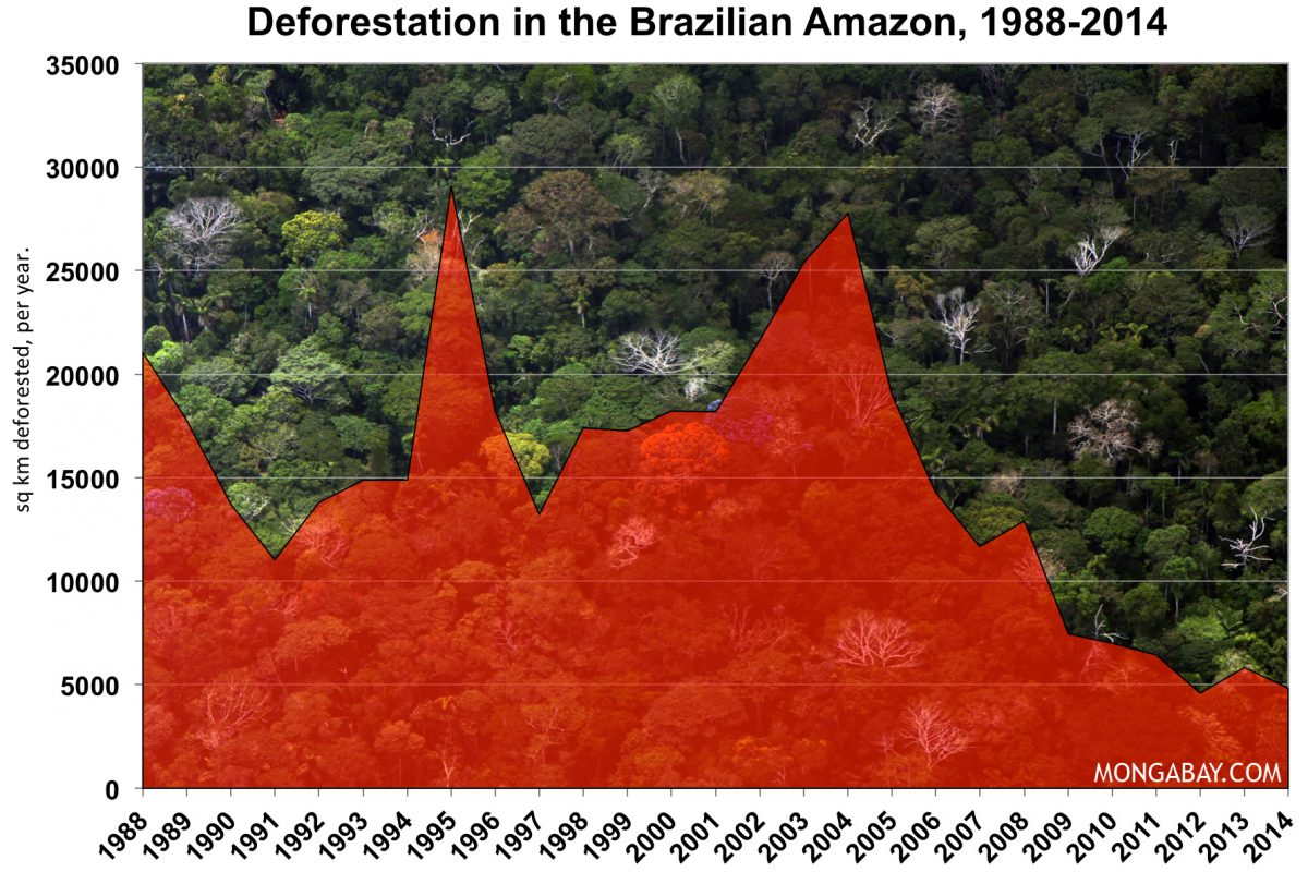 deforestation of the brazillian amazon Rio de janeiro, brazil – approximately half of the deforestation that was avoided in the brazilian amazon during 2005-2009 was the result of government conservation policies, according to analysis by climate policy initiative (cpi) rio.