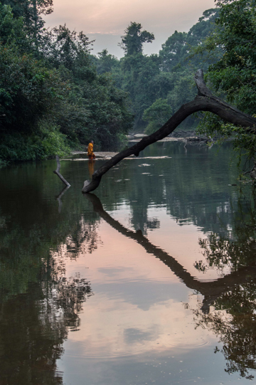 A solitary Buddhist monk from a temple in Cambodia's Areng Valley walks down the Areng River at dusk. The river is one of the last homes of critically endangered Siamese crocodiles, which are thought to number no more than 1,000 mature individuals worldwide. If the Cheay Areng dam goes ahead it will flood the entire valley, destroying crocodile habitat and the homes of over 1,600 indigenous Chong people. Photo by: Rod Harbinson.