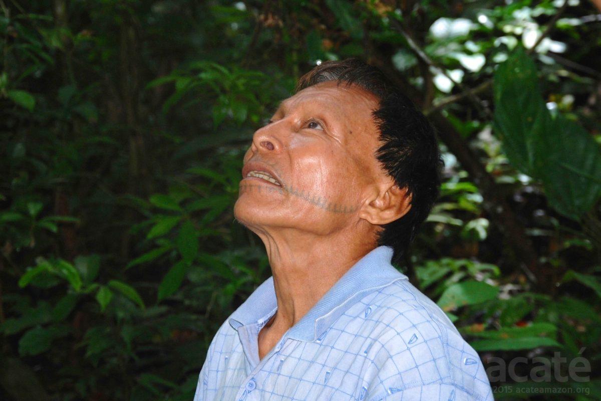 Cesar, a Matses shaman. Photo courtesy of Acaté.
