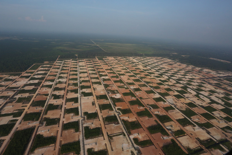 Chevron oil fields in Riau, Sumatra. Photo by Rhett A. Butler