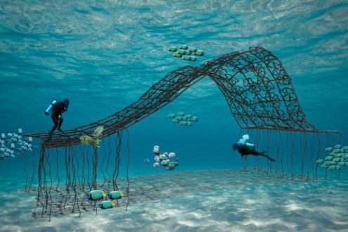 The plan for Domus Longus is depicted in an illustration. Photo courtesy of the ARTificial Reef Foundation