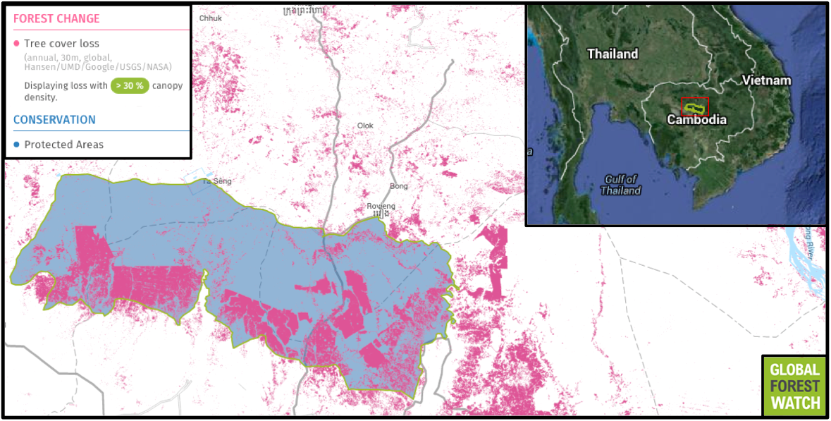 Boeung Per Wildlife Sanctuary's dry forests are home to tigers, elephants, and other threatened species. But according to Global Forest Watch, Boeung Per lost nearly a quarter of its tree cover from 2001 through 2013.