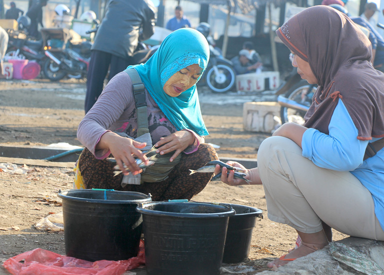 A fish seller negotiates prices at Tanjung Luar port, Lombok. Photo credit: Melati Kaye.