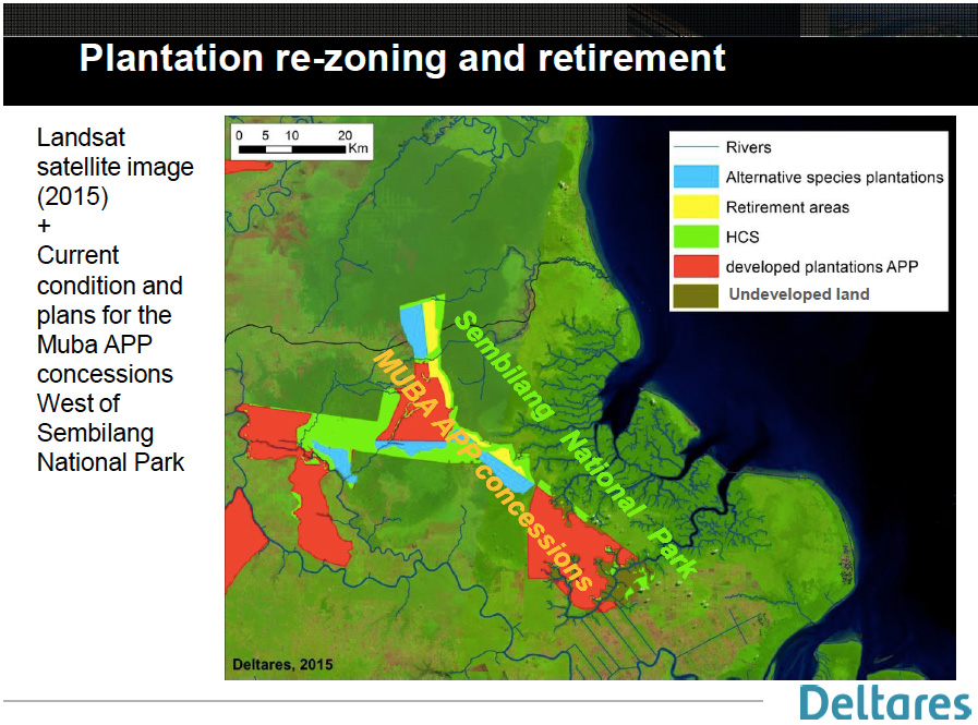 Sensitive peat areas within APP concessions in the Berbak-Sembilang landscape. Courtesy of Deltares.