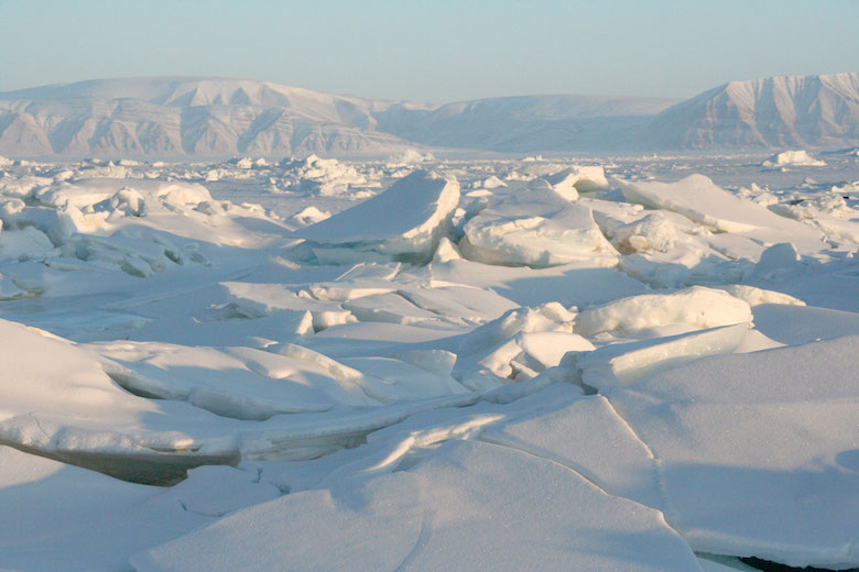 Sea ice north of Greenland. Photo credit: Courtesy Andy Mahoney, NSIDC.