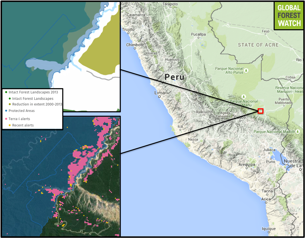 Terra-i data from Global Forest Watch show many alerts have occurred in the Amarakaeri buffer zone since 2004, and a large swath of primary forest has been degraded since 2000.