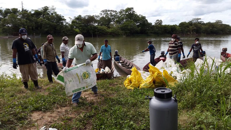 At least 23 species of fish and other aquatic life were among the dead specimens collected from the La Pasión River, according to Guatemalan government authorities. Photo courtesy of El Informante Petenero.