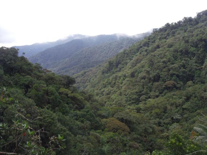 Cañones del Río Melcocho–Santo Domingo (66,250 acres)