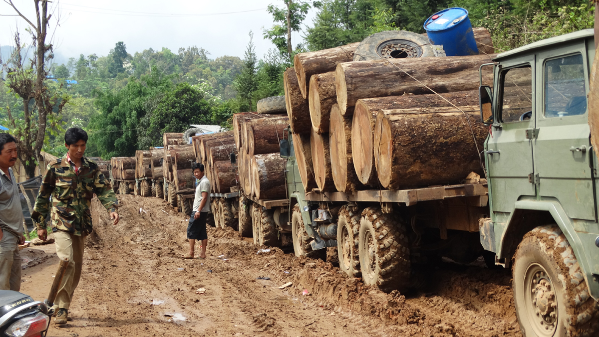 Log trucks in Kachin waiting to cross the border into China, April 2015 (c) Environmental Investigation Agency