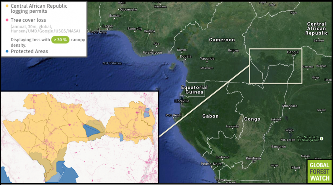 Global Forest Watch maps show the overlap of protected areas and logging concessions, where the harvest of timber is legal, in the Central African Republic.