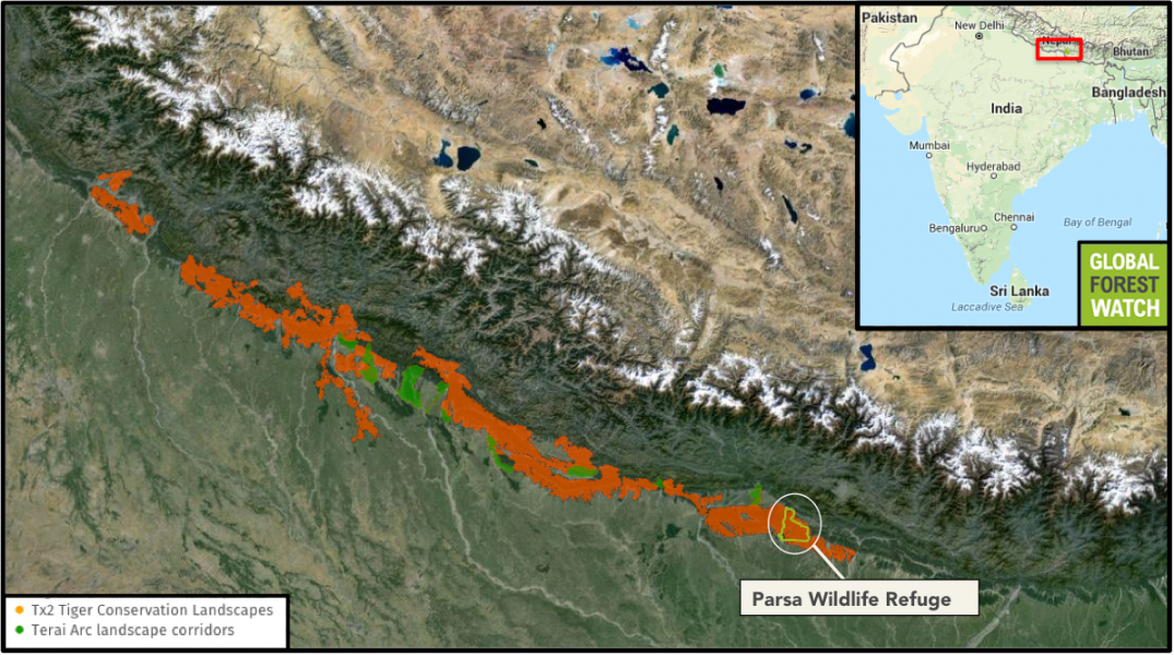 Nepal's tiger habitat: Tx2 Tiger Conservation Landscapes displays areas that could double the wild tiger population through proper conservation and management by 2020; Terai Arc Landscapes are critical forest corridors connecting existing tiger populations in Nepal and India. Parsa Wildlife Refuge sits within the Chitwan-Parsa tiger complex. Image courtesy of Global Forest Watch.