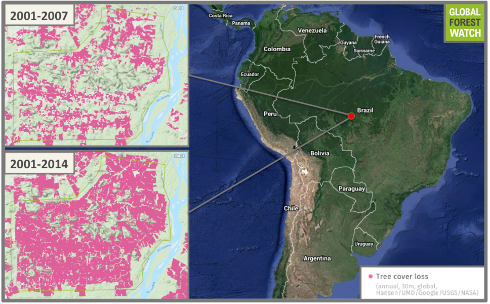 According to Global Forest Watch, the Juruena Settlement lost 65 percent -- 21,000 hectares -- of its tree cover between 2001 and 2014. Of this, 4,200 was lost between 2012 and 2014, indicating deforestation is a yet-ongoing problem in the region.
