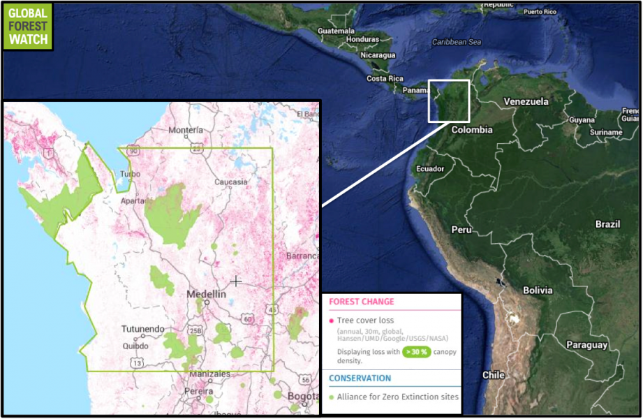 According to Global Forest Watch, the region encompassing the study site (outlined in green) lost nearly 4 percent -- 369,000 hectares -- of its tree cover to deforestation and plantation activity between 2001 and 2013. The area features many Alliance for Zero Extinction (AZE) sites, which indicate the ranges of endangered species with limited distributions and populations found nowhere else on the planet.