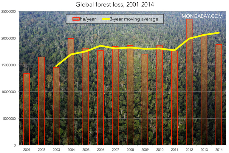 0902_global_forest_loss768
