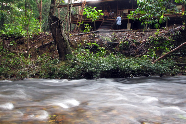 The Lubuk Rupon resthouse in the Sungai Utik Iban people's forest. Photo by Andi Fachrizal