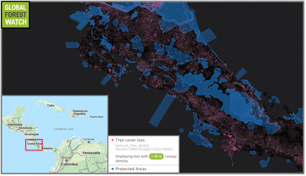 Costa Rica's protected areas were relatively effective at stymieing forest loss, with satellite data showing  the country's PAs lost only 1 percent of their tree cover.