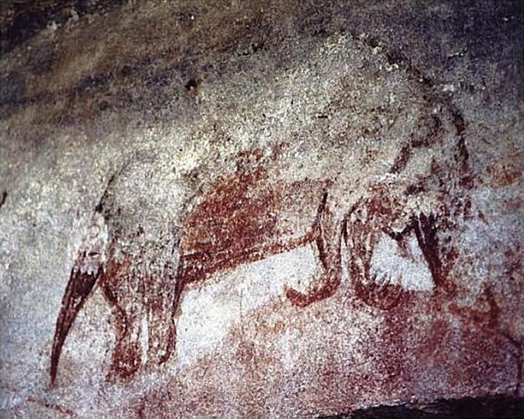 Aboriginal rock art from Arnhem Land in Australia depicting the long, down-curved beak of the echidna. An overlooked museum specimen, collected in 1901 in Australia, was identified as a Long-beaked Echidna in 2012. So the species is either recently extinct there or still could exist, unknown to scientists, in the remotest parts of the Kimberley region. Photo by G. Chaloupka courtesy of Zookeys licensed under the Creative Commons Attribution 3.0 Unported license
