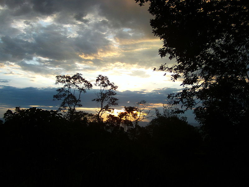 The Colombian Amazon. Photo by Actorsuarez licensed under the Creative Commons Attribution-Share Alike 3.0 Unported license.