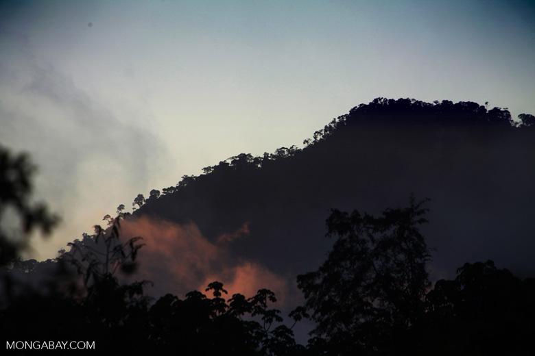 The Andean Amazon of Peru. Photo by Rhett Butler