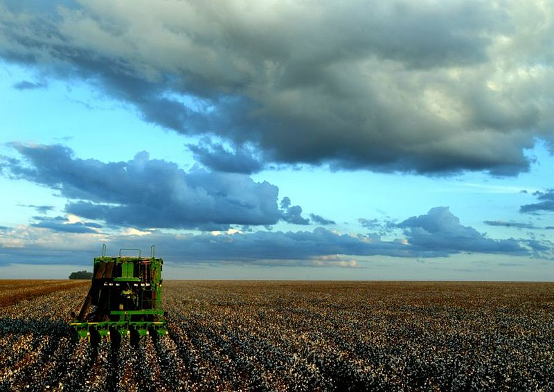 A John Deere cotton harvester in Brazil. Photo by João Felipe C.S licensed under the Creative Commons Attribution 3.0 Unported license