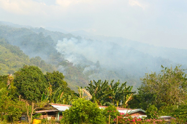 Smoke emerges from a slope on the Wondama Bay in West Papua on October 12. Photo by Duma Sanda