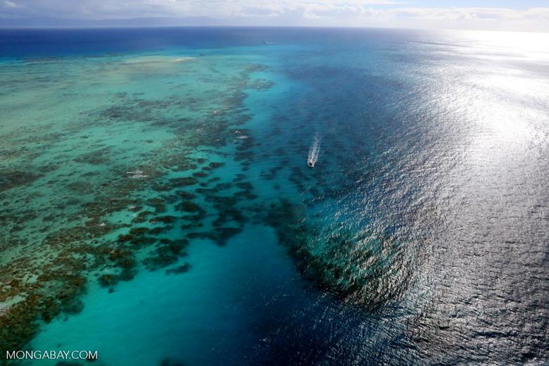 Australia's Great Barrier Reef. Photo by Rhett Butler.