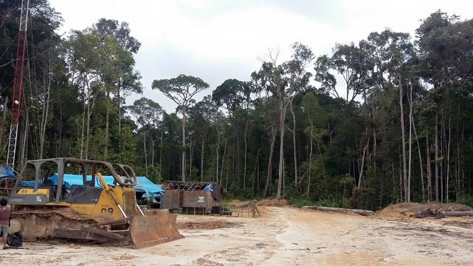 A bulldozer from the timber company, whose concession is home to some of the precious ulin trees. Photo by Indra Nugraha