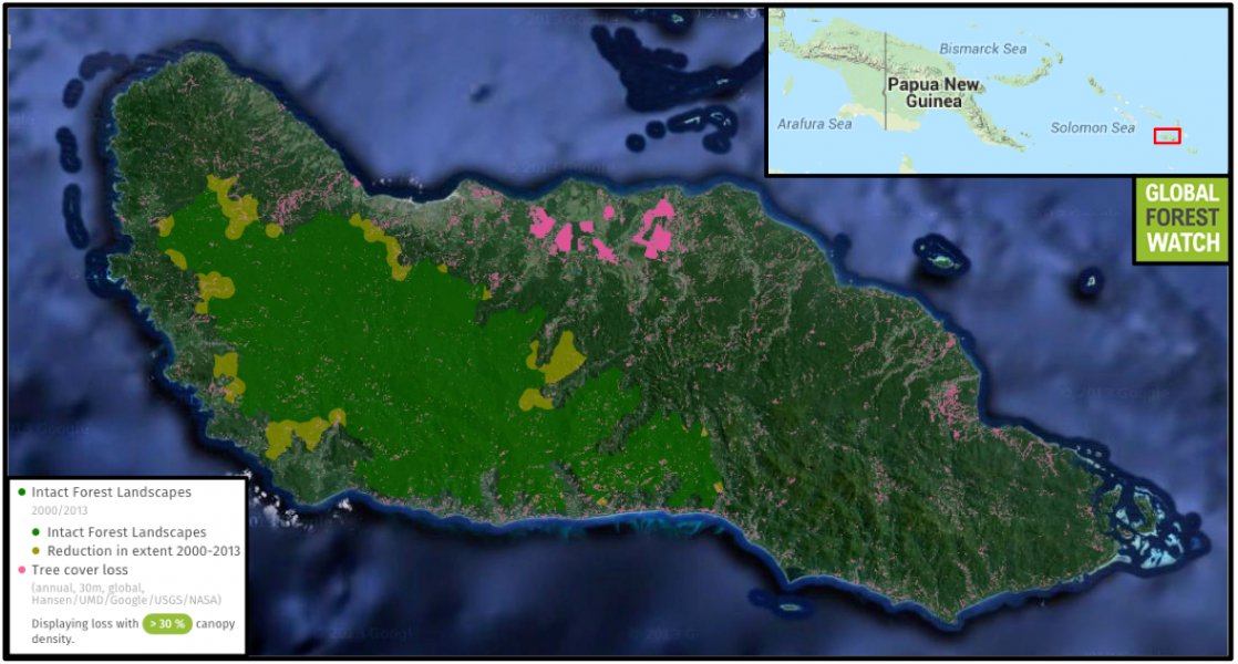 Global Forest Watch shows that from 2001 through 2013, the Guadalcanal island lost 20,122 hectares from a total tree cover of 520,777 hectares. The big pink splotches along the island's northern coast may be plantations and crop fields.