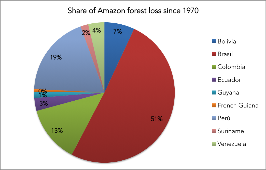 Chart showing share of Amazon forest loss since 1970