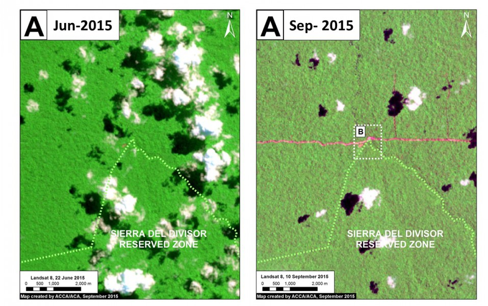 Landsat images of the new logging road crossing the Sierra del Divisor Reserved Zone. Data: USGS, SERNANP. Image courtesy of MAAP.