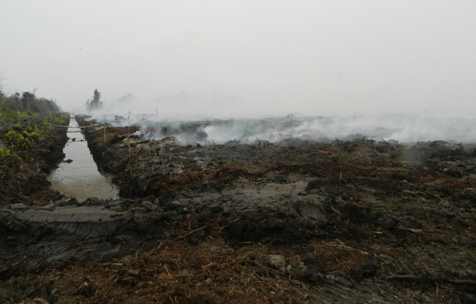 A drainage canal runs through a smoldering peatland in an oil palm company's concession in Central Kalimantan. Photo courtesy of Wetlands International/Reza Lubis