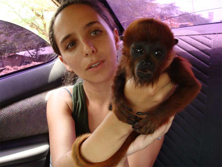 Researcher Marianne Asmussen warns against trying to buy wild animals in order to save them. It only encourages illegal hunters and marketers, she says, and can further harm the purchased animal which has been removed from its habitat. Photo by Gonzalo Medina courtesy of the Red Siskin Initiative
