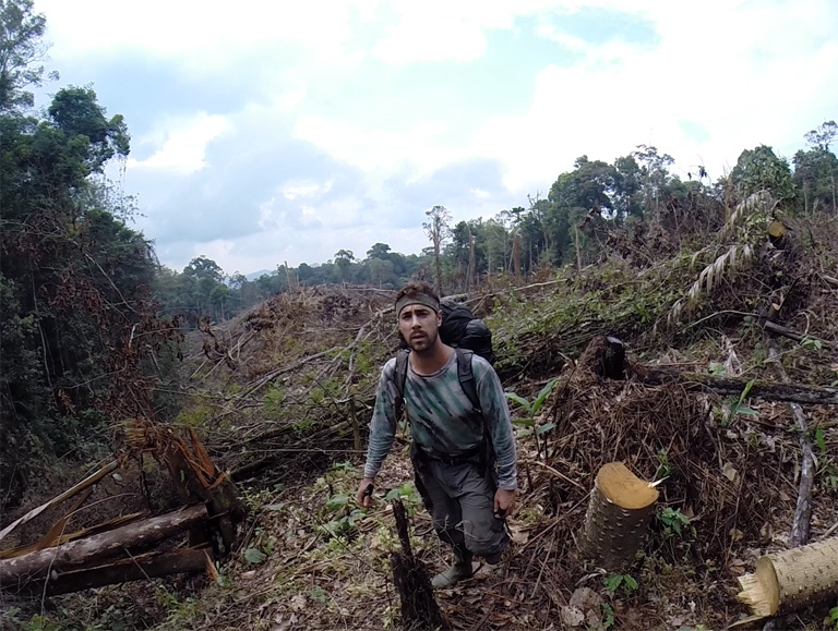 Cameras set in this patch of forest in Kerinci Seblat National Park were lost when it was illegally cleared just weeks later. In this photo Matthew Luskin is taking coordinates for a report to the National Park. Photo by Matthew Luskin / NGS.