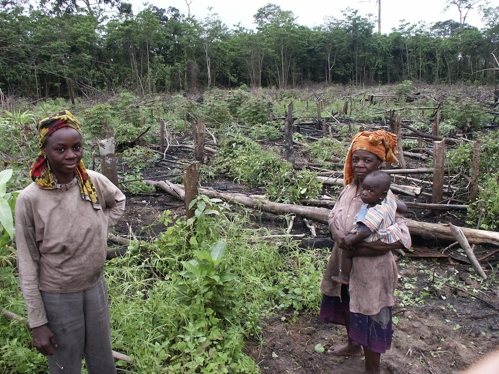 Slash-and-burn farmers in the Congo Basin. Photo by Bill Laurance.