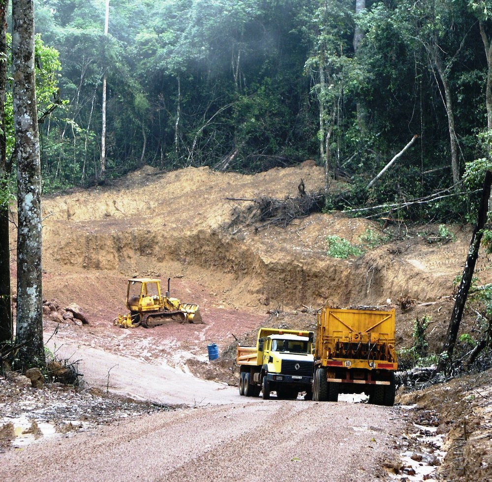 Road construction in Congo Basin rainforest. Photo by Bill Laurance.
