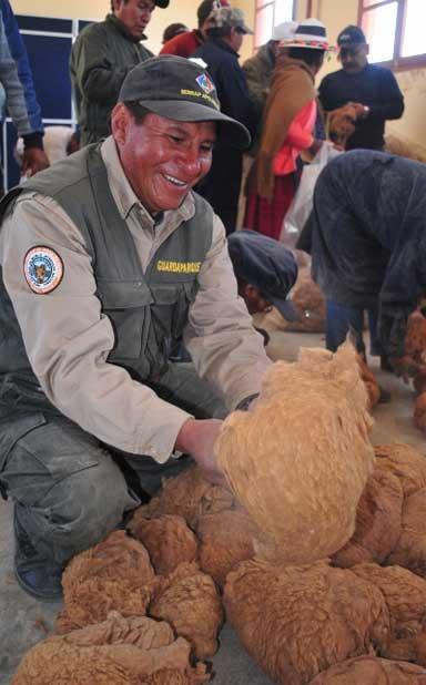 Community members clean vicuña fleeces. Photo by Daniel Maydana