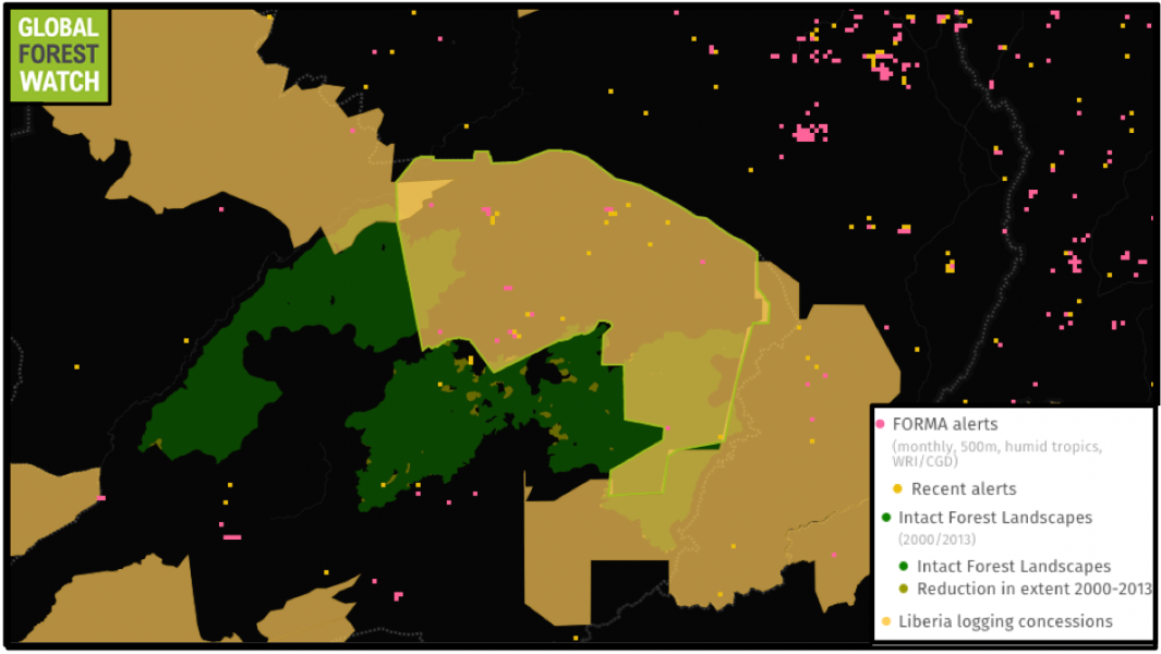 However, more recent data from Global Forest Watch indicate clearing may still be happening in Liberian concessions. For instance, 32 FORMA alerts occurred in the outlined concession  between January and September of this year. This represents a big step up from previous years, with a total of 17 alerts recorded in the concession from January 2006 through December 2014.
