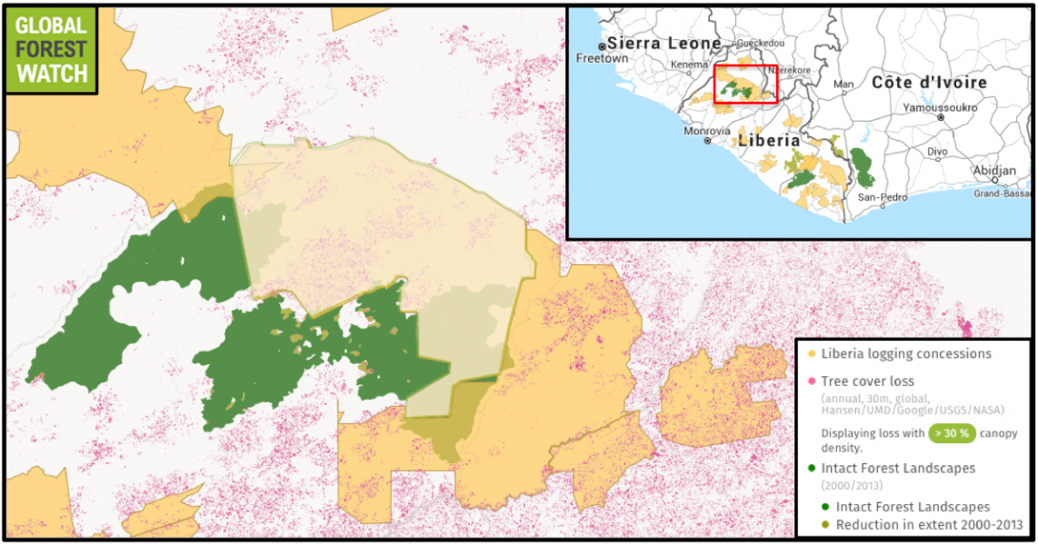 "Data from Global Forest Watch shows the overlap of intact forests with logging concessions in Liberia. The EU's FLEGT VPA was instrumental, proponents say, in overturning more than 60 illegally awarded ""private use permits"" for logging concessions in 2014. Satellite data show deforestation had ramped up prior to the cancelation, with the highlighted concession losing 2,400 hectares of tree cover in 2013 and 2014. In comparison, it lost a total of 3,500 hectares from 2001 through 2012 (image shows tree cover loss from 2001 through 2014)."