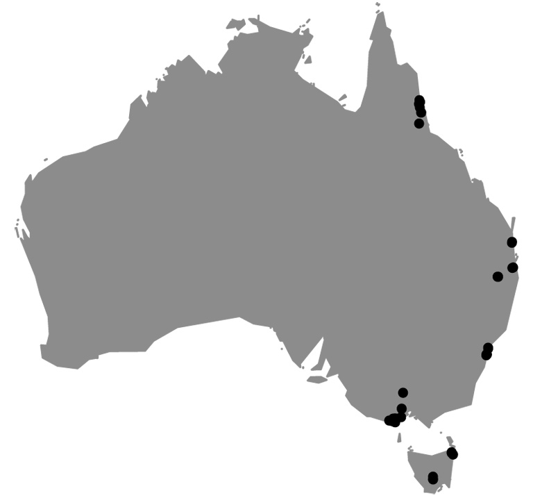 Sites along Australia's eastern edge where Dalrymple collected fresh flowers for the study. Map courtesy of Rhiannon Dalrymple.