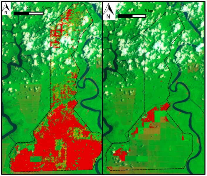 Satellite imagery from FOTO Malaysia show BLD has cleared more than 10,600 hectares of tree cover between 2001 and September 2015 (left). Of that, around 900 hectares were lost between June 30th and September 18th of this year (right).