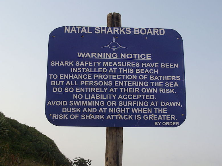 A sign warns swimmers about the presence of sharks at a beach in Salt Rock, South Africa. Photo by ChrisDHDR/Wikimedia Commons.