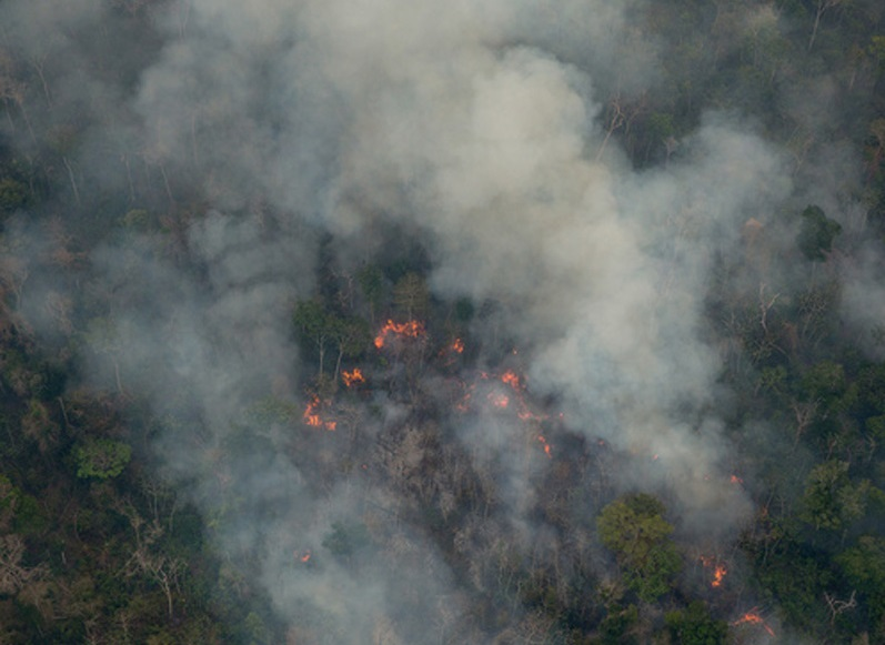 Aerial view of the fires in Arariboia territory. Photo courtesy of Greenpeace.
