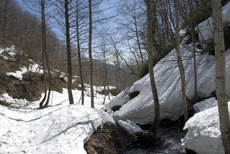 snowpack_800