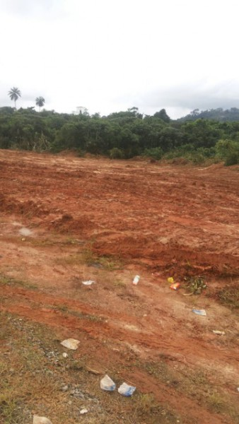 Construction of the highway has already begun, according to sources in Nigeria. Photo courtesy of the Goldman Environmental Prize.