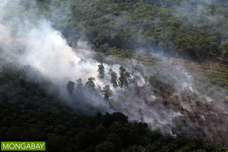Peat fire in Riau, Sumatra. Photo by Rhett Butler.