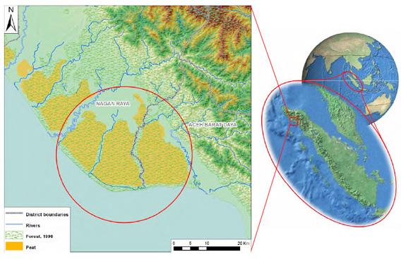 The Tripa peat swamp region on Sumatra's western coast. Image courtesy of the Tripa Rescue Team Coalition