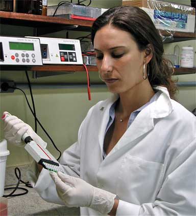 Juliana Machado Ferreira in DNA lab. She is conducting genetic studies to help identify where confiscated animals may have originated to identify poaching hotspots and to assist in the return of animals to the wild. Photo courtesy of Juliana Machado Ferreira
