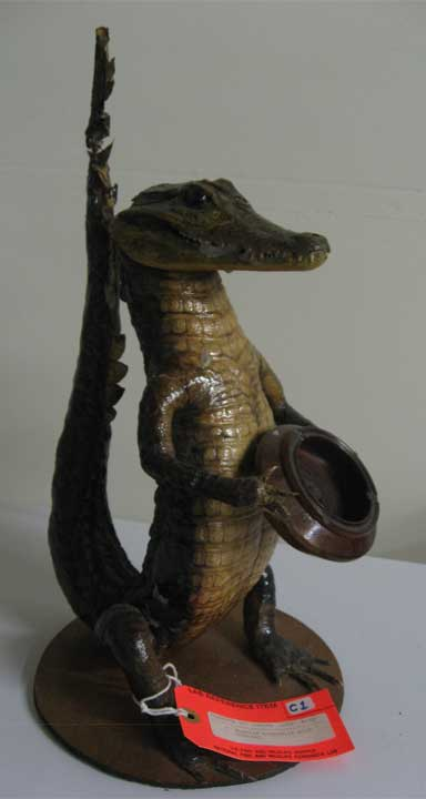 A crocodile ashtray from Latin America, confiscated upon arrival in the United States. Photo by Laurel Neme courtesy of the USFWS forensics lab