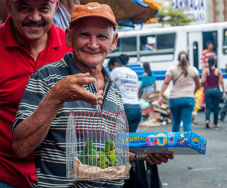 A parrot vendor offers the camera a big smile. Many local market dealers don't see wildlife trafficking as wrong, and local authorities seem to agree; police often stroll through markets without making any arrests of illegal traffickers. Photo by The Photographer made available under the Creative Commons CC0 1.0 Universal Public Domain Dedication