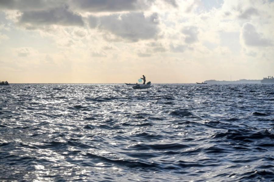 A kite fisherman looks for tuna off Wanci Island in Wakatobi, Indonesia, early one morning in October. Photo by Melati Kaye